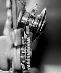 Cogwheel (Cor Oosterbeek) Tags: cogwheel macromondays macro can blikopener canopener macromonday