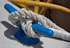 Blue ballard white rope  19 (LarryJay99 ) Tags: blue yellow rope texture fasteners detail seaside bloom flowers colors leaves foliage bokeh