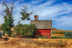 Vintage Red (Ian Sane) Tags: ian sane images vintagered old barn alone field umatilla county pendletoncold springs highway 37 pendleton oregon rural architecture landscape photography clouds canon eos 5ds r camera ef50mm f14 usm lens