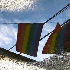 Rainbow on the Ground (Read2me) Tags: pree cye reflection rainbow flag puddle water provincetown ground iphone friendlychallenges gamesweepwinner thechallengefactory