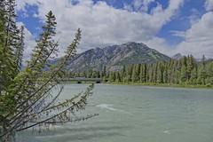 Banff Bow River (SMitscherlich) Tags: mitscherlich kanada alberta rockymountains banff bowriver banffnationalpark canada