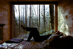 A Long Awaited Rest (george.bremer) Tags: 35mm bed c41 color400 film forest fpp homeprocessed lomography lounging olympus om2n opticfilm120 plustek relaxation resting tinyhouse vuescan window