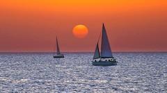 Sailing at sunset - Tel-Aviv beach - Follow me on Instagram:  @lior_leibler22 (Lior. L) Tags: sailingatsunsettelavivbeach sailing sunset telaviv beach sea seascapes wonderfulnature