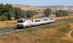 252.042 (Alvia Picasso) con el Arco Irun-A coruña y Vigo (Javirenfe251.004.8) Tags: renfe arco españa trenes trains trainset transporte ferrocaril amor ferrospotters trainspotter trainspotting