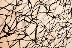 Collect 8 (Thomas Hawk) Tags: california coldmountain6bridge museum sfmoma soma sanfrancisco sanfranciscomuseumofmodernart usa unitedstates unitedstatesofamerica painting bricemarden fav10