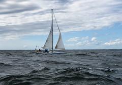 cocu (Antti Tassberg) Tags: meri purjehdus purjevene vene cocu htr boat helsinki race sailing sailingboat sea tallinna yacht kirkkonummi uusimaa suomi fi