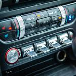 Mustang Panel thumbnail