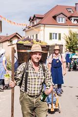 Winzerfest_Umzug_209 (alexanderanlicker) Tags: auggen badenwürttemberg breisgauhochschwarzwald deutschland europa trachtenundbrauchtumsumzug umzug wein weinfest winzerfest winzerfestumzug