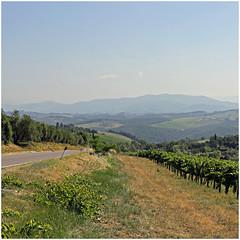 montespertoli 6 (beauty of all things) Tags: italien toskana montespertoli landscape landschaft quadratisch