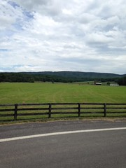 mineral county 3 (GAWV) Tags: wv pasture sky fence mineral clouds road mountains serenity peace travel