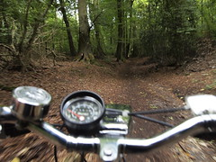 In the Woods at Chesham Bois (cycle.nut66) Tags: raleigh esquire steel bike bicycle cycle ride riding classic nottingham british made chrome bronze route hutes speedometer handlebars light sturmey archer dynohub three speed ag hub internal gears chilterns chiltern hills countryside england britain olympus epl1 evolt micro four thirds mzuiko