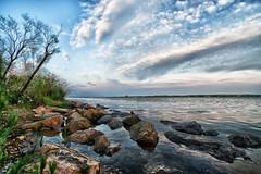 En la orilla (candi...) Tags: riumar deltadelebro río ebro piedras arboles nubes cielo airelibre sonya77 naturaleza nature paisaje