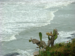 Praia da Cal (Gijlmar) Tags: brasil brazil brasilien brésil brasile brazilië riograndedosul américadosul américadelsur southamerica amériquedusud torres playa beach praia
