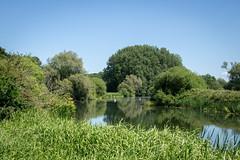 River Nene - Sutton, Peterborough, UK-2 (Nature21290) Tags: june2018 peterborough rivernene sutton uk