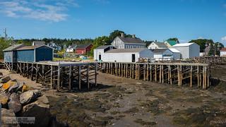 Brier Island - Low Tide