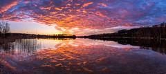 Burning Hüttwilersee (PhiiiiiiiL) Tags: hüttwilersee thurgau sunset panorama swiss landscape mirror reflection reflektion nikon d810 happy moment