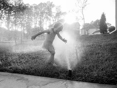 August September 2018-6 (Amato Photography) Tags: ashby felix frogs sprinkler summer 2018 august september