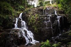 La Petite Cascade, Mortain (chrisgj6) Tags: avranches france manche gorge landscape waterfall river nature water cascade cance petitecascade mortain sélune lapetitecascade normandy