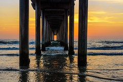 Sunset on Scripps Pier (fenicephoto) Tags: scrippspier