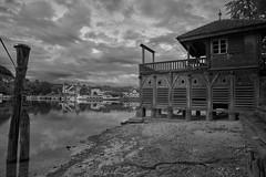 House on the river (ivoräber) Tags: house river rhine rhein loxia black white