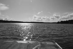 Sensommar för Fotosöndag (annesjoberg) Tags: sensommar latesummer fotosondag fotosöndag photosunday monochrome blackandwhite fs180909