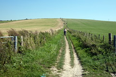 On The Way Down (Alan1954) Tags: walking sussex 2018 southdownsnationalpark