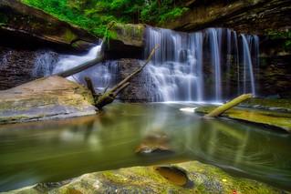 Great Falls of Tinkers Creek #4