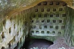 La Necropoli di Centocamere_39