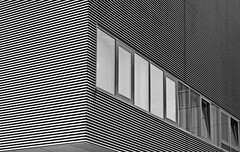 - - -  striped ---- (christikren) Tags: austria architecture blackwhite christikren monochrome facade grey stripes windows stpölten landhaus linescurves detail pattern structures lines linear