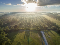 Early Morning From 100 Feet (Rich[FL]) Tags: aerial sandycreekairpark usa fl airplanes airstrip flying gatedcommunity hangarhomes hangars pavedrunway private residential panamacity florida unitedstates us
