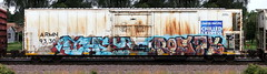 They/Rosay (quiet-silence) Tags: they rosay act tko armn reefer unionpacific chilledexpress armn933003 graffiti graff freight fr8 train railroad railcar art