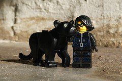 You never said anything (captain_joe) Tags: toy spielzeug 365toyproject lego series15 minifigure minifig thief jewell cathryn catwoman panther