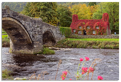 Tu Hwnt Ir Bont Tearoom (.Wadders) Tags: riverconwy conwy wales llanrwst 2018 d600 nikonfxshowcase nikkor1635mmf4 water autumn