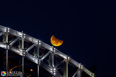 bridge&moon (Andrew V. Zhigaloff) Tags: landscape russia saintpetersburg winter architecture bastion bridge bright building capital chainbridge city cityscape cold construction dark dusk evening frost frosty frozen historic history ice iced illuminated illumination lamp light lights metropolis metropolitan monument moon neva night old peterburg petersburg piter river riverside road snow street tower town traffic transport twilight urban water