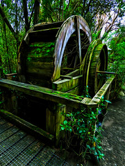 The Waterwheel No Longer Turns (Steve Taylor (Photography)) Tags: waterwheel moss decay dilapidated broken fence black brown green wooden newzealand nz southisland canterbury christchurch trees winter