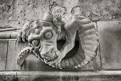 Real claw for a stone monster (Jean-Marc Vogel Photography) Tags: lincoln lincolnshire england cathedral stone pierre monster monstre griffe claw black white blackandwhite bw blackwhite noir blanc monochrome noirblanc nb schwarz weiss blanco cathédrale nero