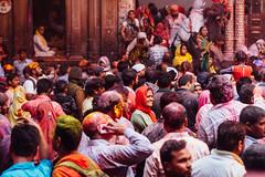 Holi in Shri Banke Bihari Mandir, Vrindavan India (AdamCohn) Tags: abeer adamcohn bankebiharimandir hindu india shribankeybiharimandir vrindavan gulal holi pilgrim pilgrimage अबीर गुलाल होली