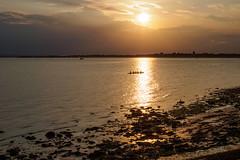 Portsmouth Late August 2018-E8280757 (tony.rummery) Tags: beach em10 eveningsun mft microfourthirds omd olympus portsmouth rowers seaside solent southsea sunset england unitedkingdom gb
