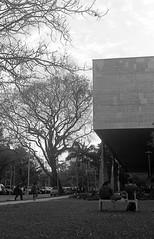 Ócio recreativo (caco.carvalho) Tags: fauusp arquitetura urbanismo leicam3 summicron50mm kodak tmax400