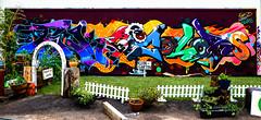 HH-Graffiti 3772 (cmdpirx) Tags: hamburg germany graffiti spray can street art hiphop reclaim your city aerosol paint colour mural piece throwup bombing painting fatcap style character chari farbe spraydose crew kru artist outline wallporn train benching panel wholecar