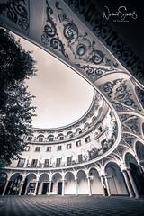Sevilla - Plaza del Cabildo (B&W) (nigel_xf) Tags: plaza platz del cabildo seville sevilla altstadt building historical painting colourful historisches gebäude spanien espana spain nikon d750 nigel nigelxf vsfototeam architektur plazadelcabildo bw schwarzweis