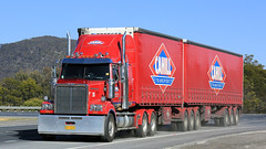 The Red, White & Blue (1/3) (Jungle Jack Movements (ferroequinologist)) Tags: kenworth western star cahill transport freight management all haulage boxers creek nsw new south wales goulburn hume highway hp horsepower big rig haul cabover trucker drive carry delivery bulk lorry hgv wagon road nose semi trailer deliver cargo interstate articulated vehicle load freighter ship move roll motor engine power teamster truck tractor prime mover diesel injected driver cab cabin loud rumble beast wheel exhaust double b grunt red white blue flag