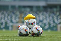 . (ExtratimePhotos) Tags: northernireland bosniaandherzegovin football soccer sports sporting men windsorpark belfast groupstageleaguebgroup3 countyantrim gbr general