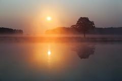 IMG_4194 (geraldtourniaire) Tags: natur nature nebel sonnenaufgang landschaft canon eos6d ef 24105l franken mittelfranken