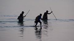 IMGP0456 Fishermen on the move (Claudio e Lucia Images around the world) Tags: matemwe zanzibar tanzania fisherman fishermen sea water fish stick clams lowtide pentax pentaxk3ii sigma sigma50500 pentaxart sigmaart bigma people africa fishing