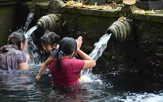 Praying at Tirta Empul Temple, Bali, Indonesia (1) (josepsalabarbany) Tags: tirtaempultemple bali indonesia praying temple southeastasia religion people spiritualism water aigua holywaterspring