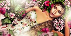 Nariell (meriluu17) Tags: lode flower floral flora portrait people pink pinky pastel princess fairy fae