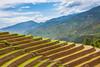 _J5K0836.0617.Lao Chải.Mù Cang Chải.Yên Bái. (hoanglongphoto) Tags: asia asian vietnam northvietnam northwestvietnam landscape scenery vietnamlandscape vietnamscenery terraces terracedfields transplantingseason sowingseeds hillside canon canoneos1dsmarkiii hdr tâybắc yênbái mùcangchải phongcảnh ruộngbậcthang ruộngbậcthangmùcangchải mùacấy đổnước sườnđồi mùcangchảimùacấy ricceterracedinvietnam terracedfieldsinvietnam abstrat curve trừutượng đườngcong laochải canonef2470mmf28liiusm sky bầutrời clouds mây bluessky bầutrờixanh