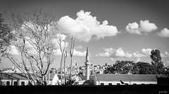 IST/West (gorelin) Tags: sony alpha a7ii a7 fe28f20 28mm turkiye turkey istanbul galata tower blackandwhite blackwhite black white skies clouds buildings mosque city streets streetshooting trees