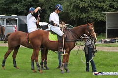 am_polo_cup18_0267 (bayernwelle) Tags: amateur polo cup gut ising september 2018 chiemgau bayern oberbayern pferd pferdesport reiter bayernwelle foto fotos oudoor game horse bavaria international reitsport event sommer herbst